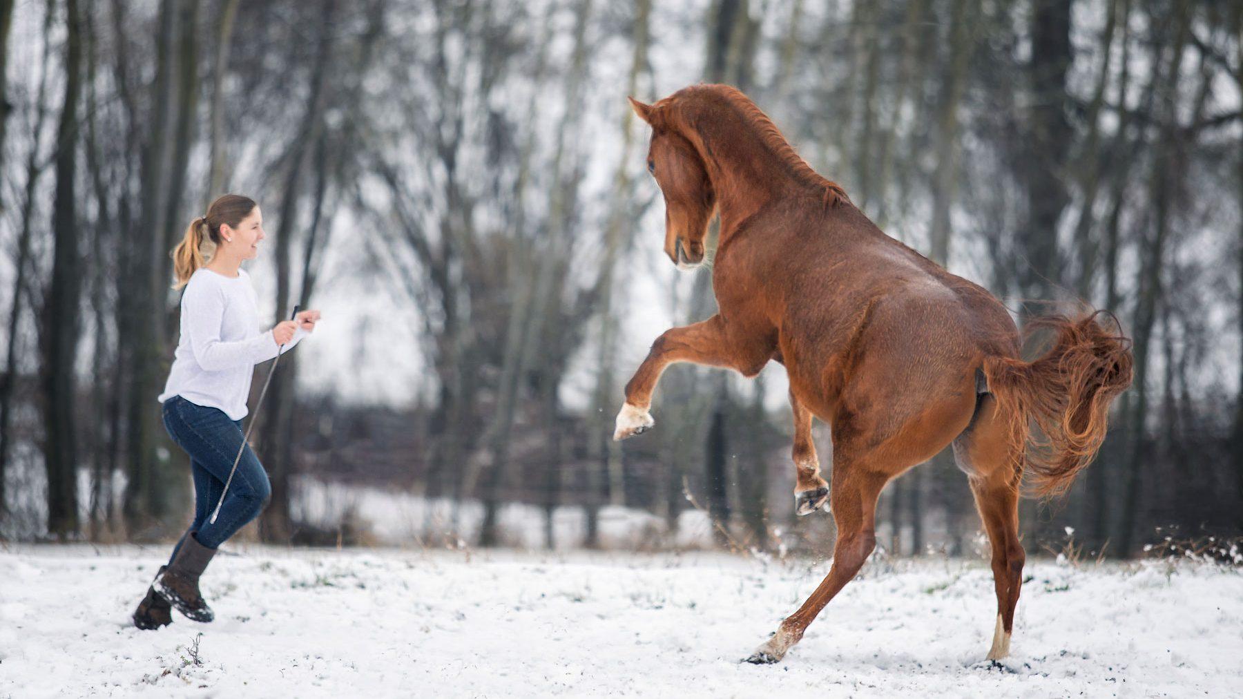 Alisa spielt mit Astron - Freiarbeit im Schnee, Foto: Lena Henrich