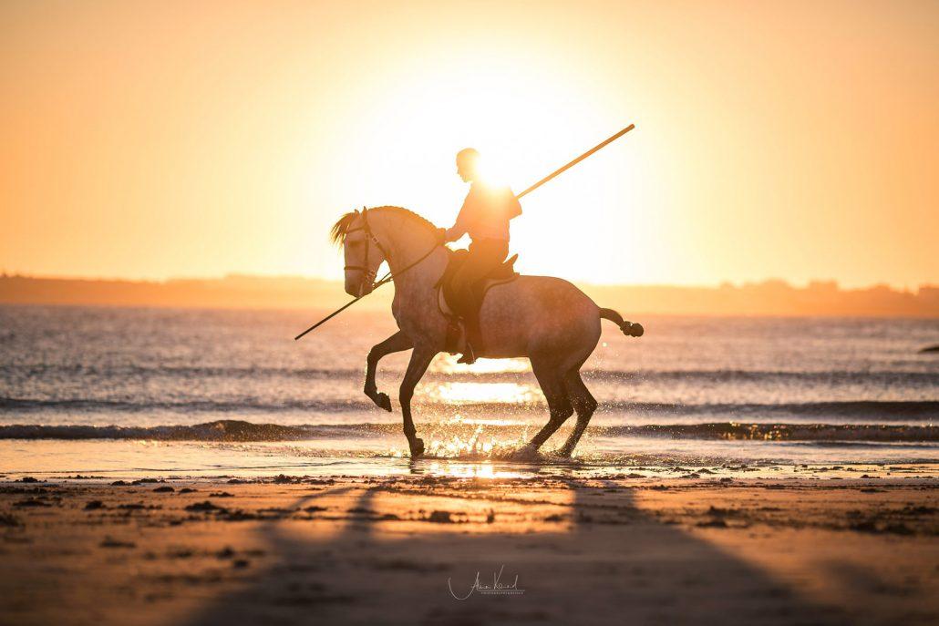 Fotoreise Portugal Garocha am Meer im Sonnenuntergang