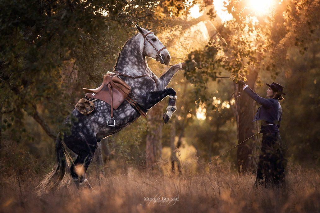 Fotoevent Portugal Steigendes Pferd und portugiesisches Kostüm