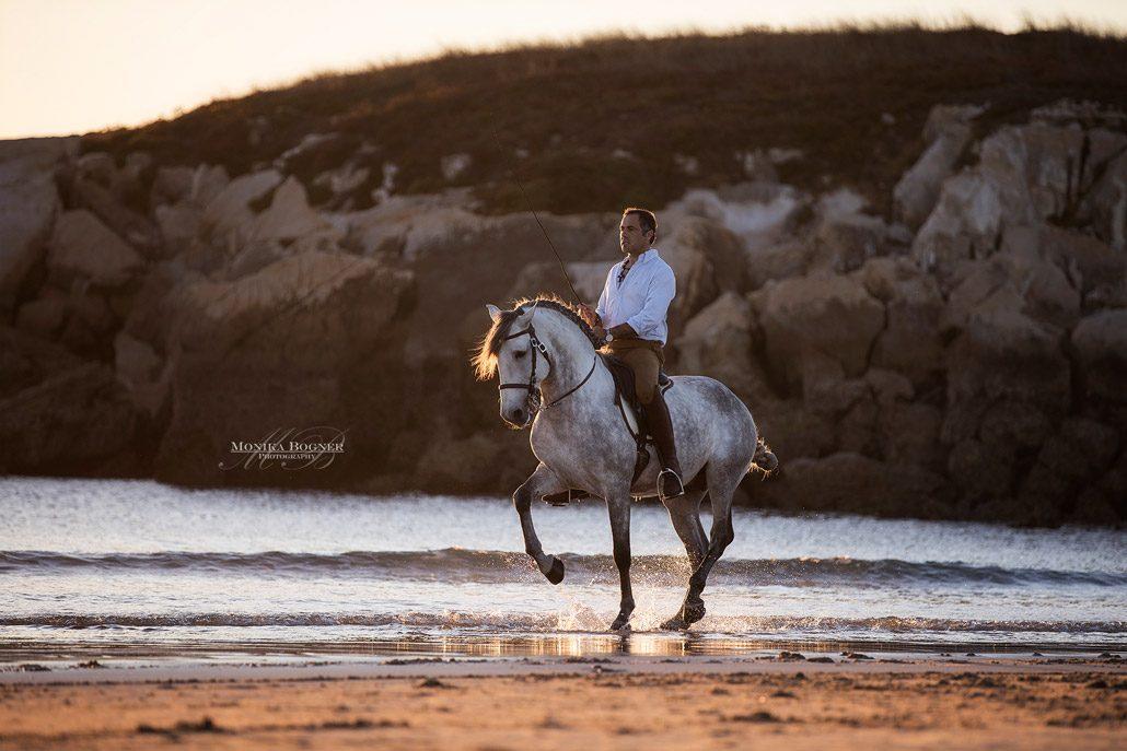 Fotoevent Portugal Piaffe am Meer Sonnenuntergang