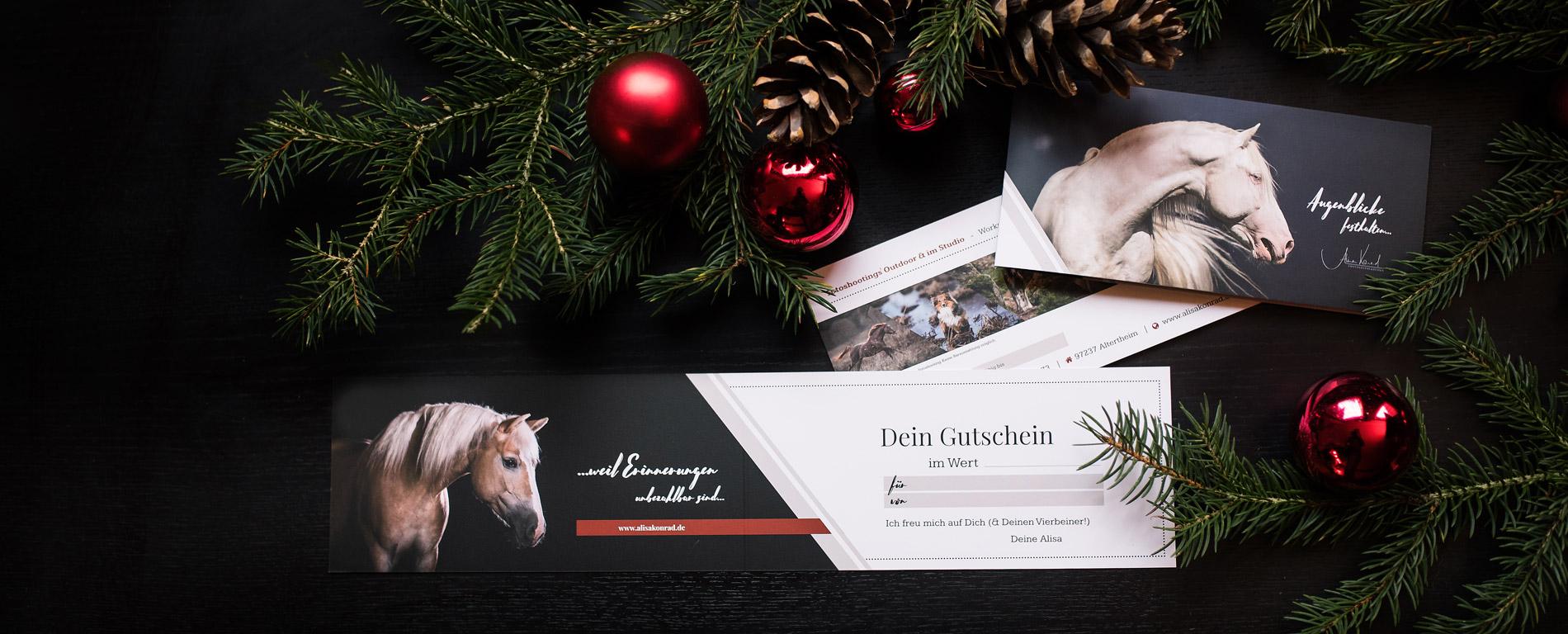 Gutschein Pferdefotografie und Coachings Bayern, Sitz Würzburg - Alisa Konrad