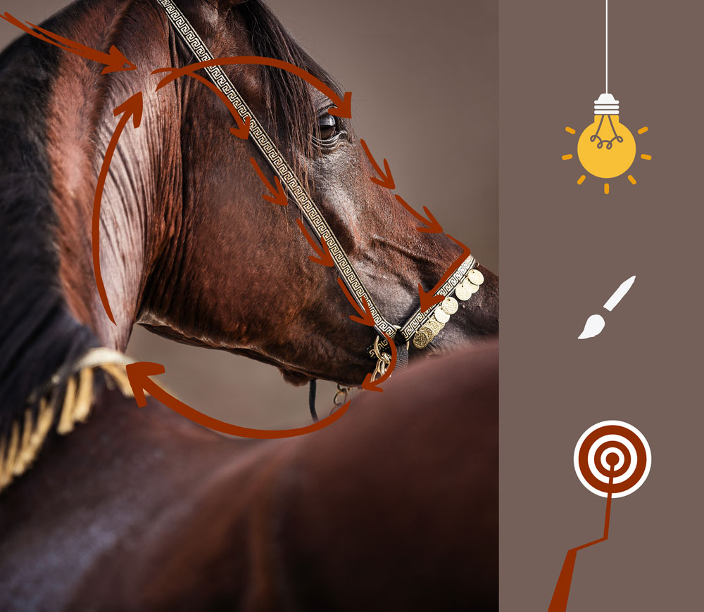 Blickführung, Bildbearbeitung mit Photoshop, Blick lenken, Foto bearbeiten