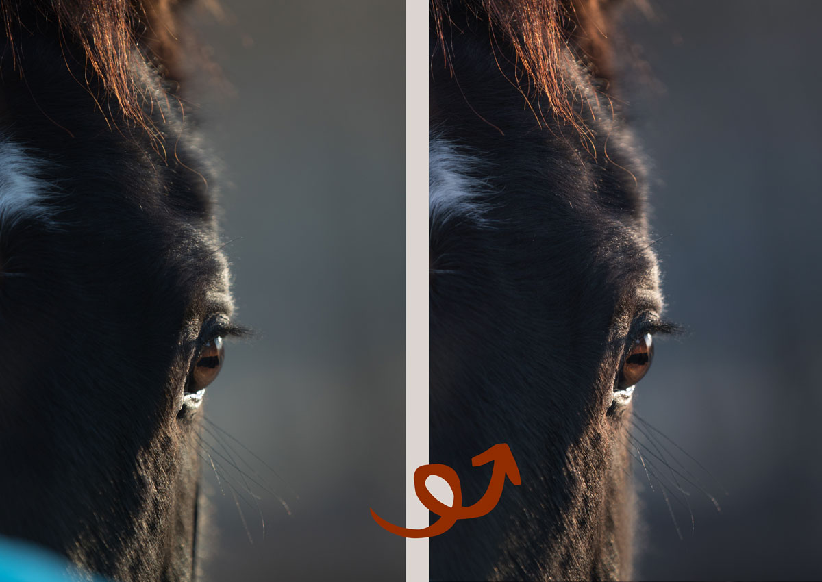 Bildbearbeitung mit Photoshop, Retusche lernen, Foto bearbeiten, Kalt-Warm-Kontrast