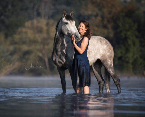 Pferdeportraits im Wasser, Pferdefotos machen, Freilauf mit Pferd im Wasser